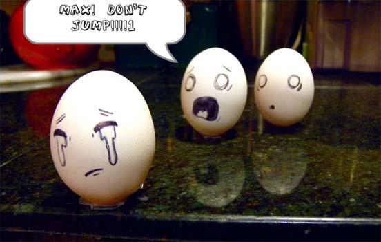 Những hình ảnh ngộ nghĩnh Egg-11