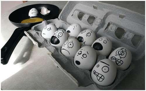 Những hình ảnh ngộ nghĩnh Egg2