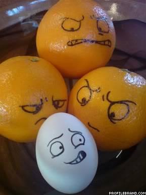 Những hình ảnh ngộ nghĩnh Egg7