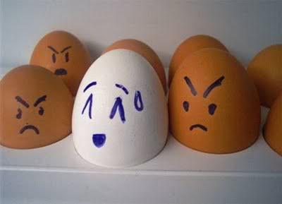 Những hình ảnh ngộ nghĩnh EggFunWithEggsPart111