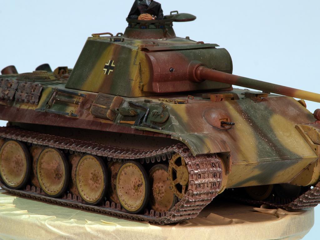 Panther G late TERMINADO P1160317_zpse9d55c36