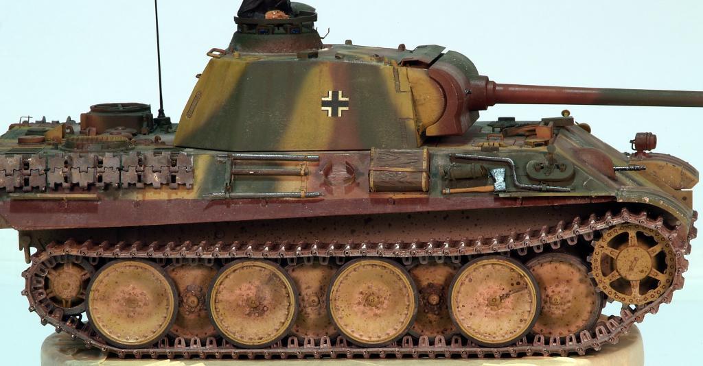 Panther G late TERMINADO P1160328_zps1b52000c