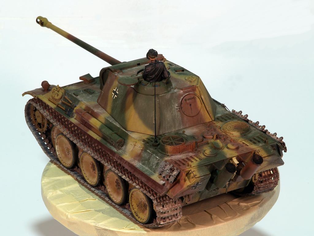Panther G late TERMINADO P1160331_zpsd4db5fa5