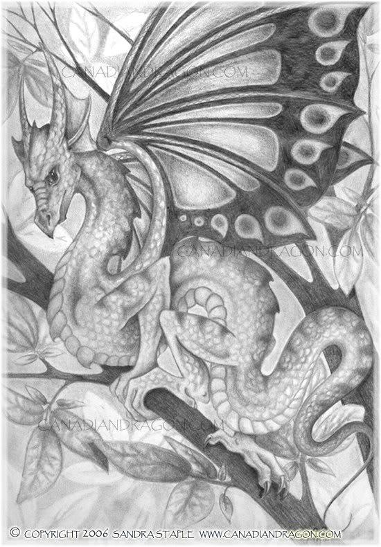 Khám phá truyền thuyết các loài rồng 71711247314197
