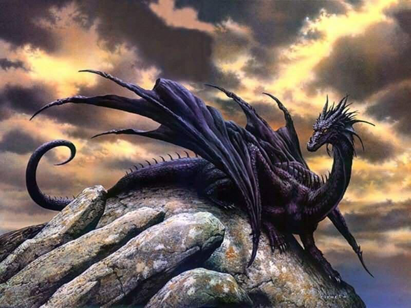 Bạn là loài rồng nào? Rong20den