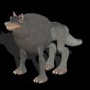 Los perros y gatos para Elite Lobosalvaje