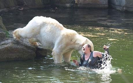 10 loài động vật nguy hiểm nhất hành tinh CS08109153_1_11