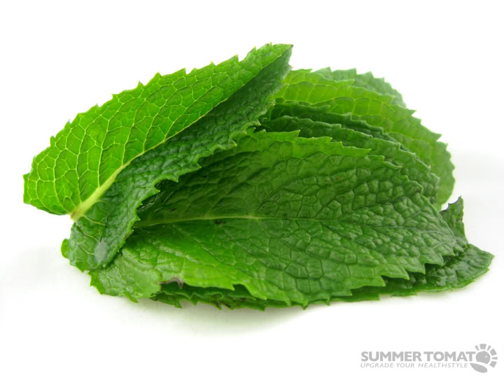 What Kind Of Herb/Spice Are You? Mint-leaves