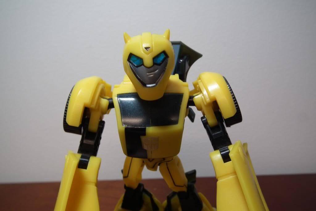 Collection de Braveheart: Venez voir mon musé personnel de Transformers - Page 5 DSCF2100