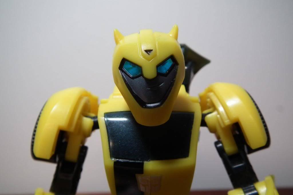 Collection de Braveheart: Venez voir mon musé personnel de Transformers - Page 5 DSCF2101