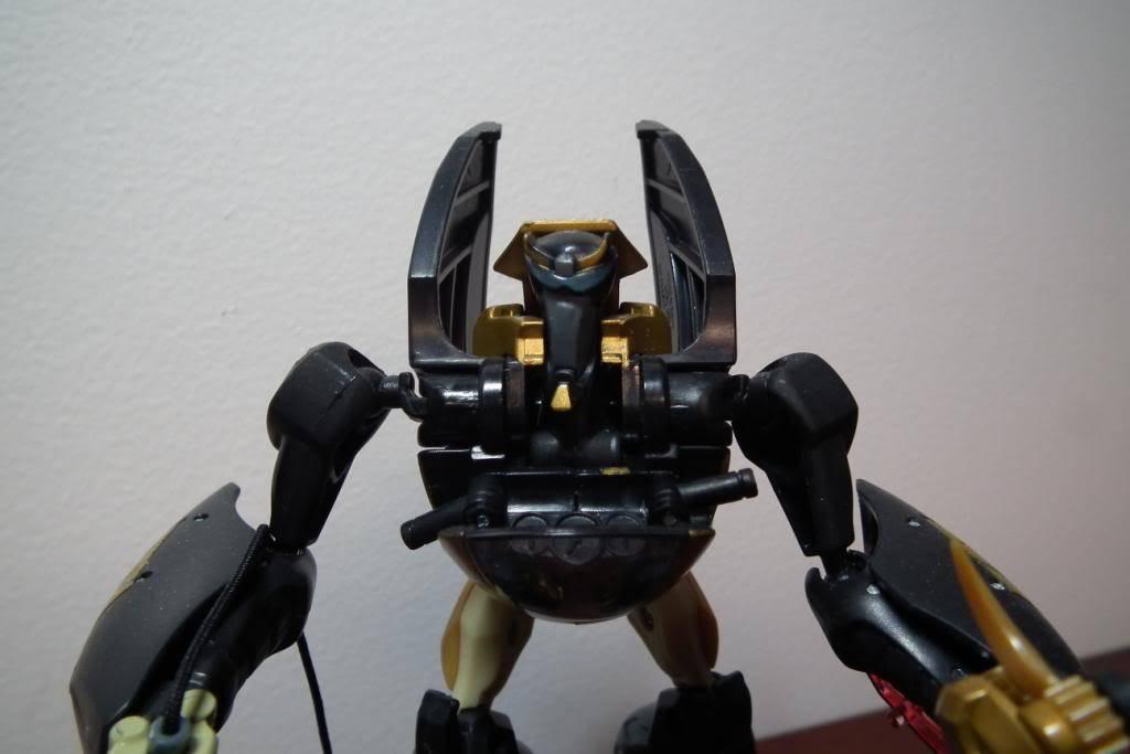 Collection de Braveheart: Venez voir mon musé personnel de Transformers - Page 5 DSCF2115