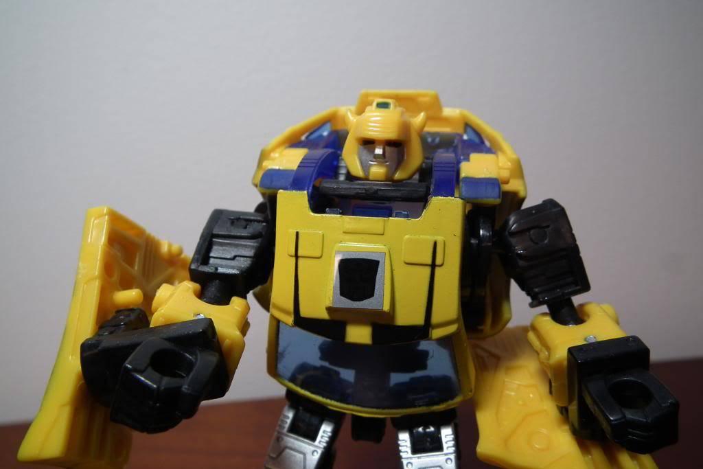 Collection de Braveheart: Venez voir mon musé personnel de Transformers - Page 2 DSCF1761