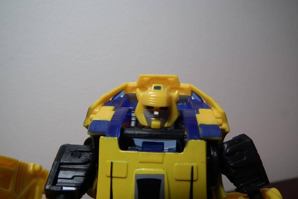 Collection de Braveheart: Venez voir mon musé personnel de Transformers - Page 5 DSCF1762