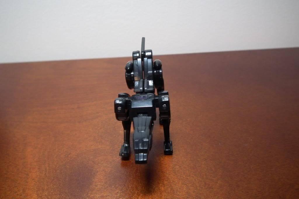 Collection de Braveheart: Venez voir mon musé personnel de Transformers - Page 2 DSCF1862
