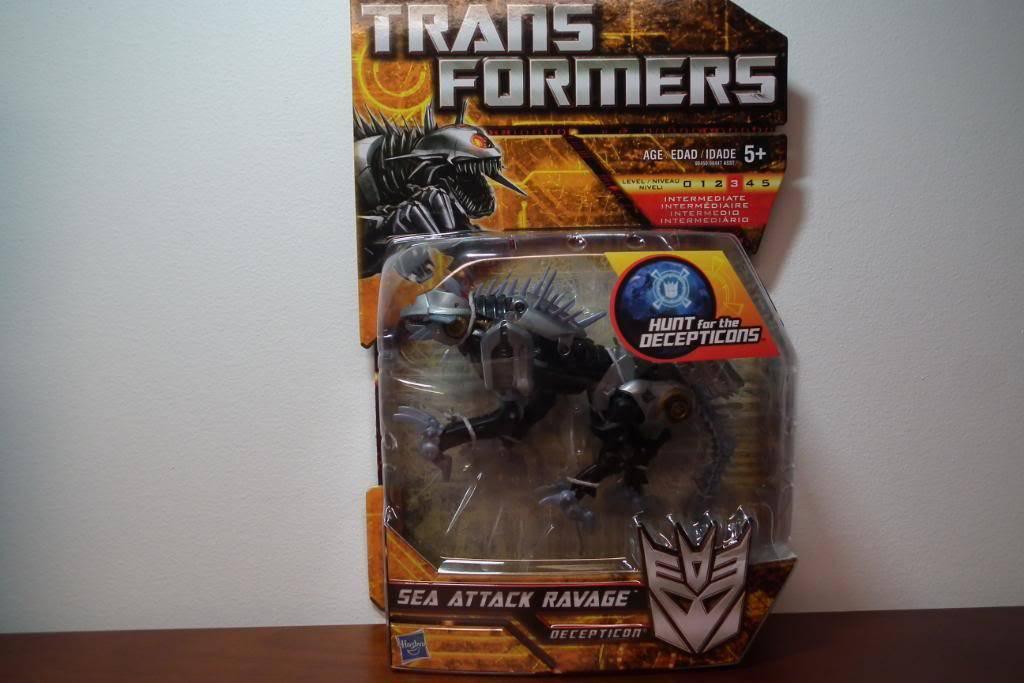 Collection de Braveheart: Venez voir mon musé personnel de Transformers - Page 5 DSCF1867