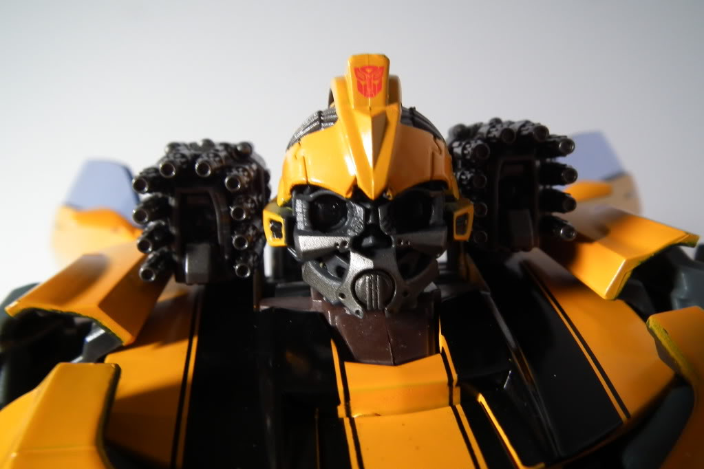 Collection de Braveheart: Venez voir mon musé personnel de Transformers - Page 7 DSCF5091