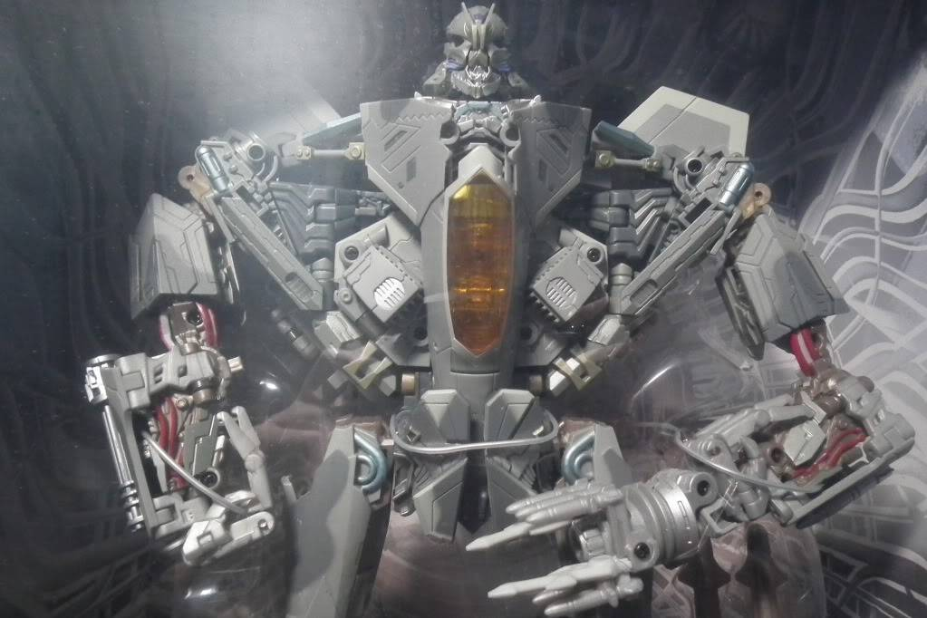 Collection de Braveheart: Venez voir mon musé personnel de Transformers - Page 7 DSCF4006