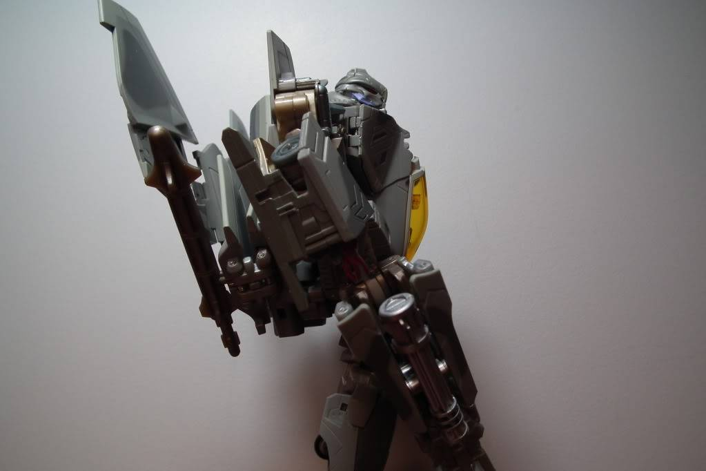Collection de Braveheart: Venez voir mon musé personnel de Transformers - Page 7 DSCF4216