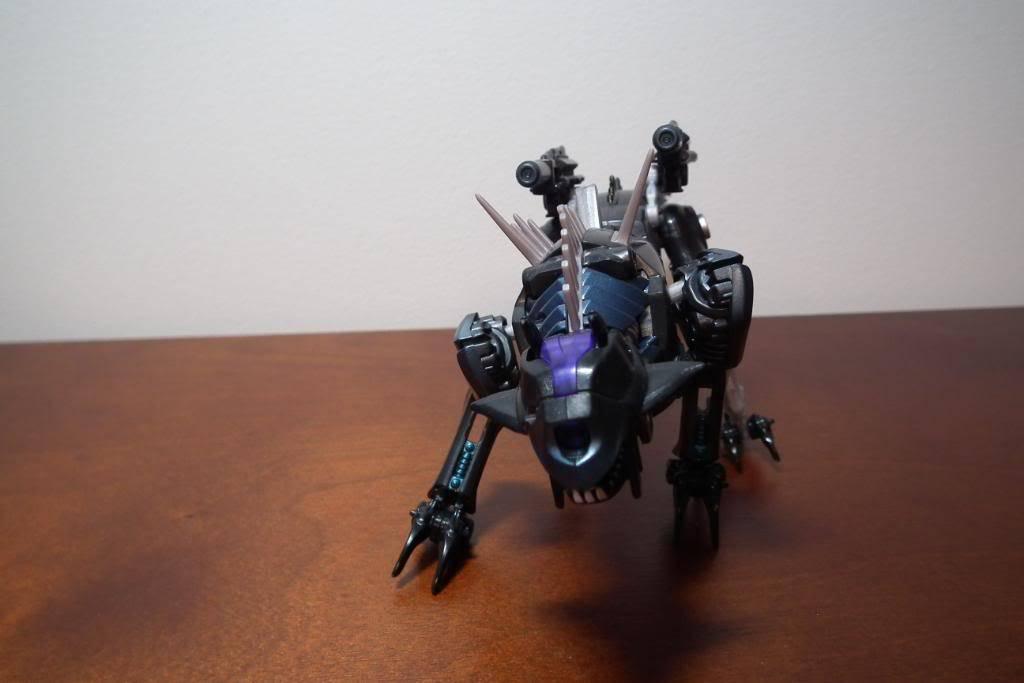 Collection de Braveheart: Venez voir mon musé personnel de Transformers - Page 4 DSCF2056