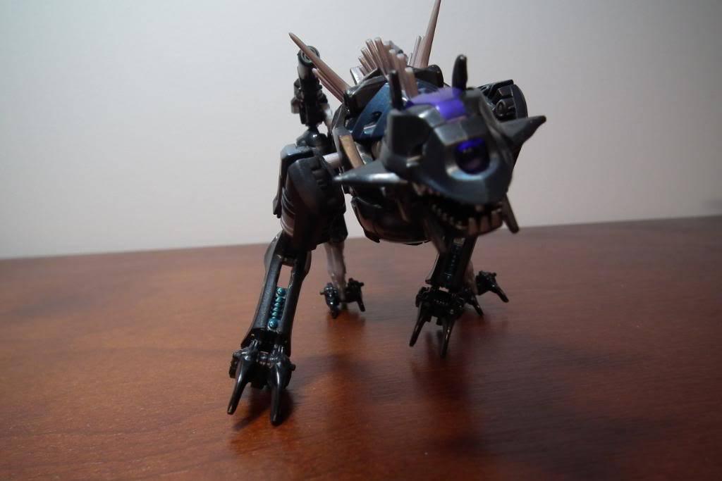 Collection de Braveheart: Venez voir mon musé personnel de Transformers - Page 4 DSCF2058