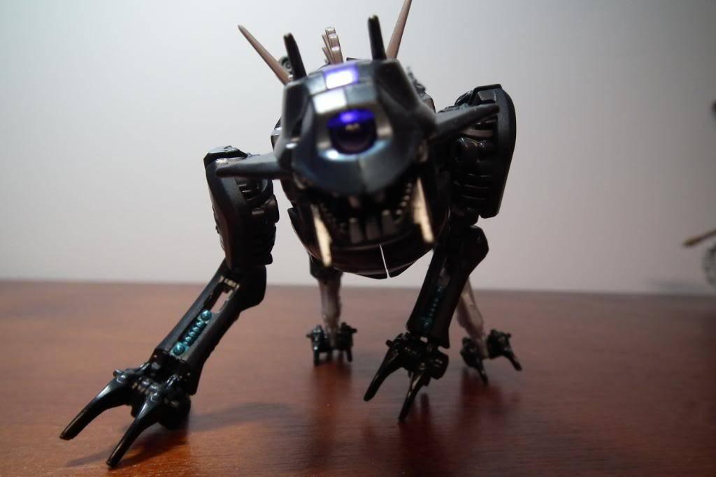 Collection de Braveheart: Venez voir mon musé personnel de Transformers - Page 4 DSCF2061