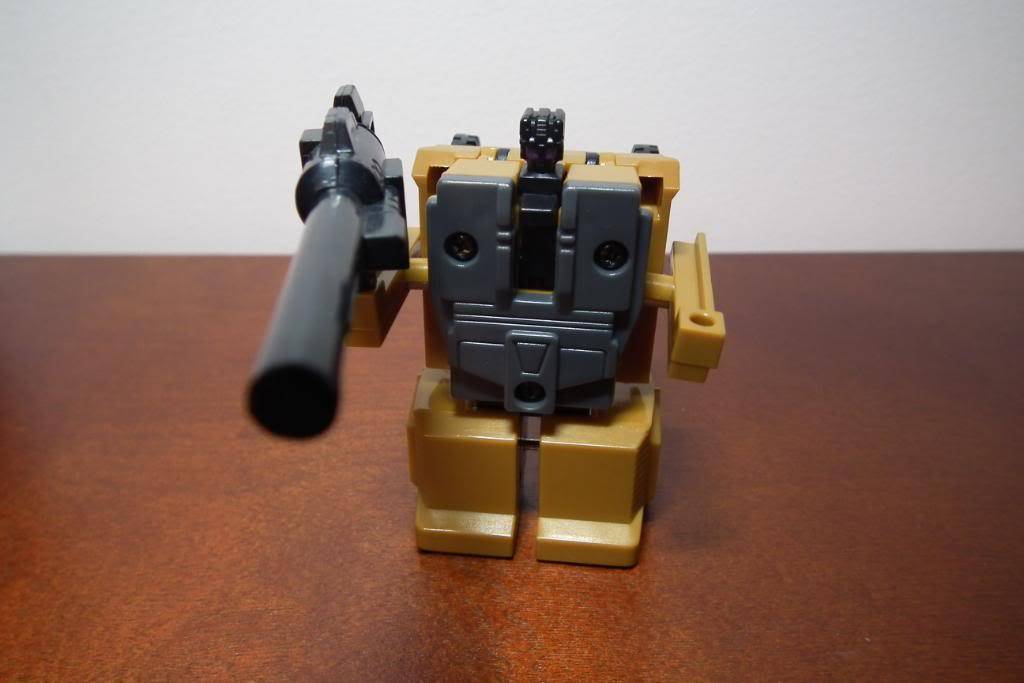 Collection de Braveheart: Venez voir mon musé personnel de Transformers - Page 3 DSCF1629