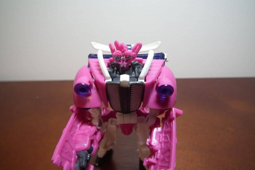 Collection de Braveheart: Venez voir mon musé personnel de Transformers - Page 5 DSCF2999
