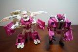 Collection de Braveheart: Venez voir mon musé personnel de Transformers - Page 5 Th_DSCF3002