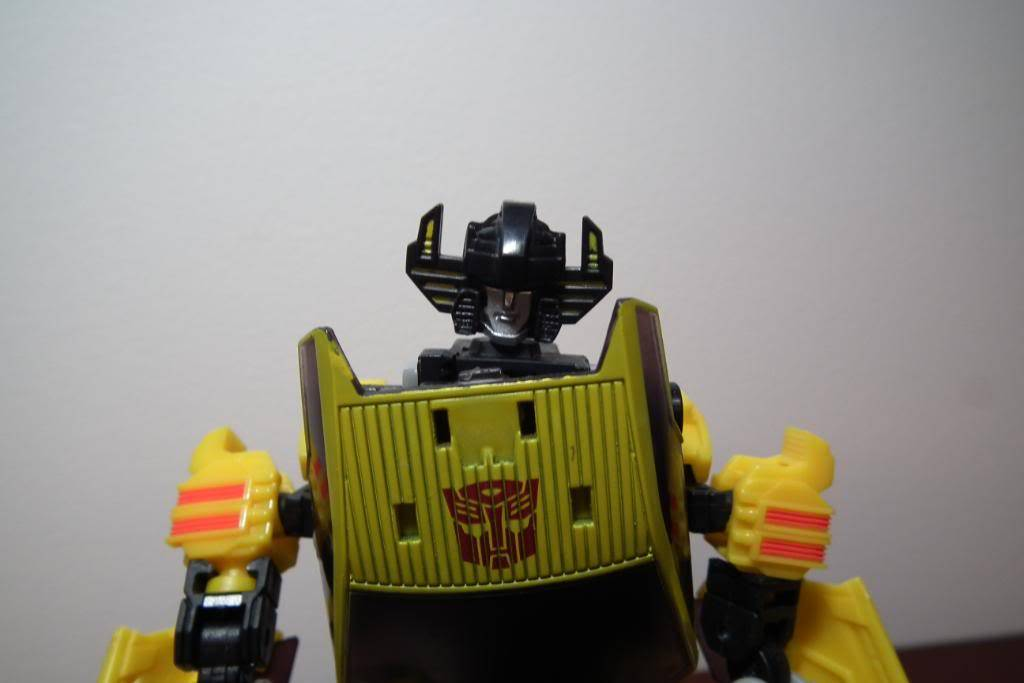 Collection de Braveheart: Venez voir mon musé personnel de Transformers - Page 5 DSCF1804