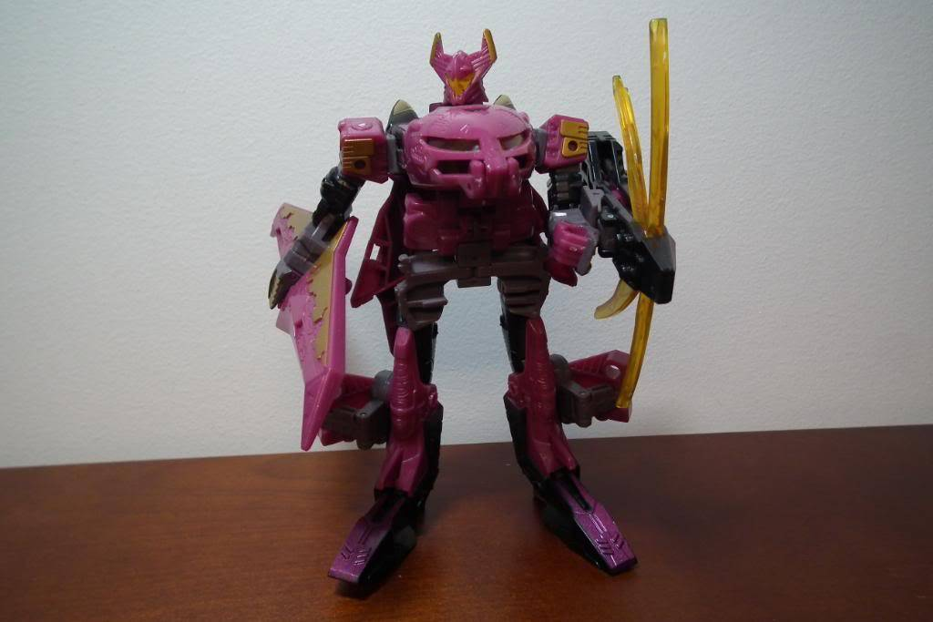 Collection de Braveheart: Venez voir mon musé personnel de Transformers - Page 5 DSCF2036