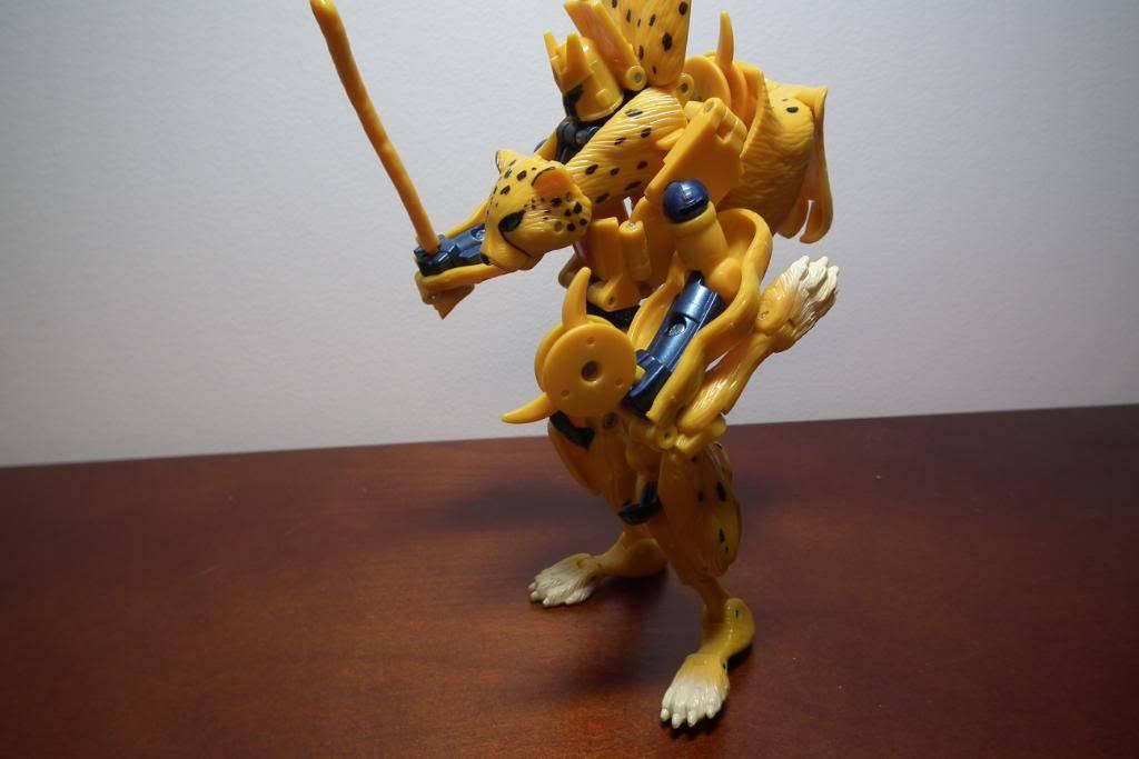 Collection de Braveheart: Venez voir mon musé personnel de Transformers - Page 3 DSCF2798