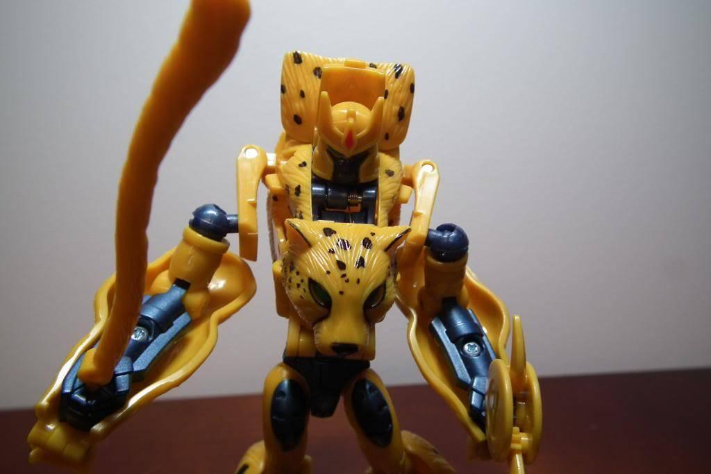Collection de Braveheart: Venez voir mon musé personnel de Transformers - Page 3 DSCF2799