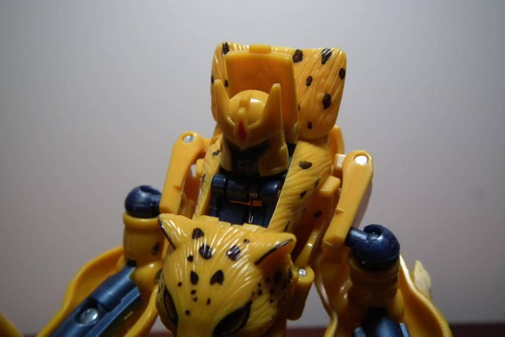 Collection de Braveheart: Venez voir mon musé personnel de Transformers - Page 5 DSCF2800