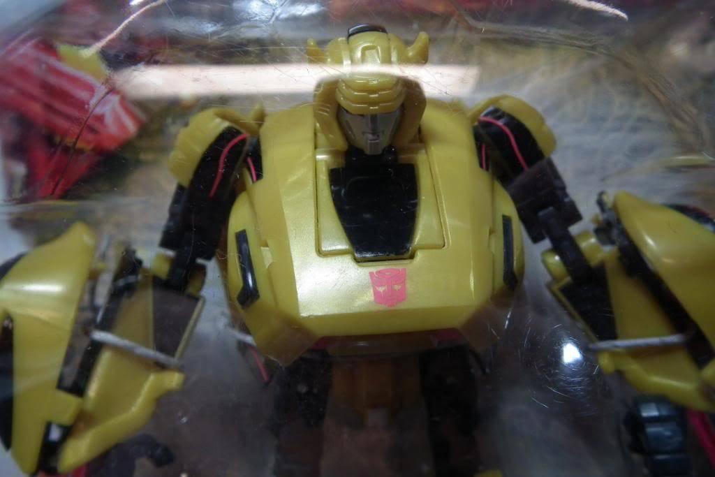 Collection de Braveheart: Venez voir mon musé personnel de Transformers - Page 5 DSCF1324