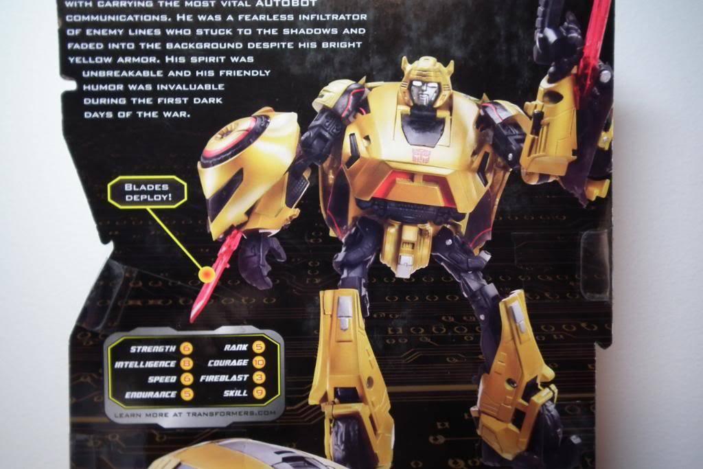 Collection de Braveheart: Venez voir mon musé personnel de Transformers - Page 5 DSCF1326