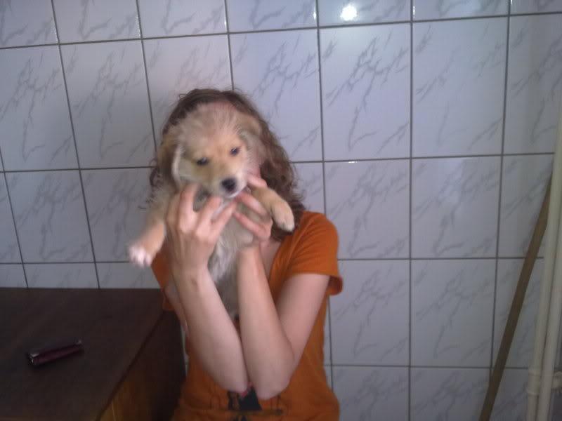 Nino, né en juin 2011, petit bout adorable, abandonné dans la rue  F18a3d71