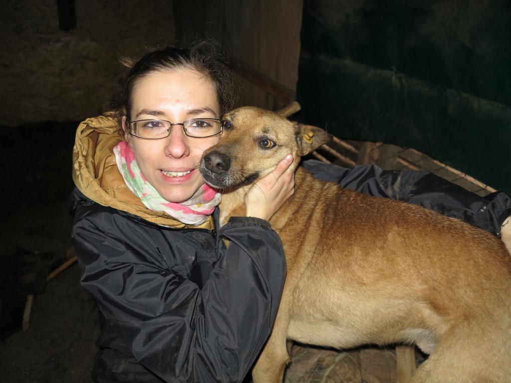 Tzupy, chien de notre quartier, mâle très sociable, né en 2009. IMG_2036_zps79a88d99