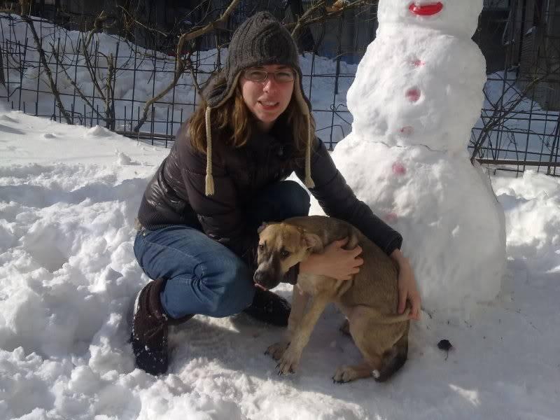 Lila, adorable chienne croisée, née en octobre 2011 1e12d1ad