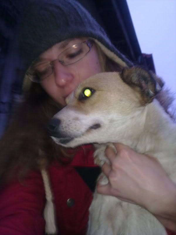 Carla, petite chienne, 1 an et demi  5b3561e2