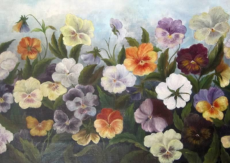 Cvetna oaza - Page 6 Pansy51