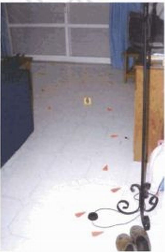 Forensic Pictures May 4th 4.30pm Hairslivingroomfloor09_VOLUME_IXa_Page_2317