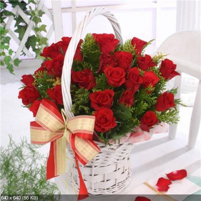 Поздравляем с Днем Рождения Милу (МилаяМила) 368de027c71693a9ec23fb803fc6fa9c