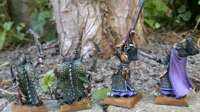 The Chronicles of Daniel36 - Mordheim Adventures DarkElves-007