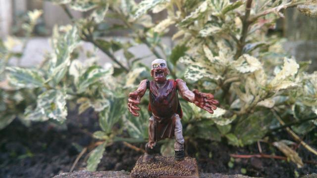 The Chronicles of Daniel36 - Mordheim Adventures Zombie-003