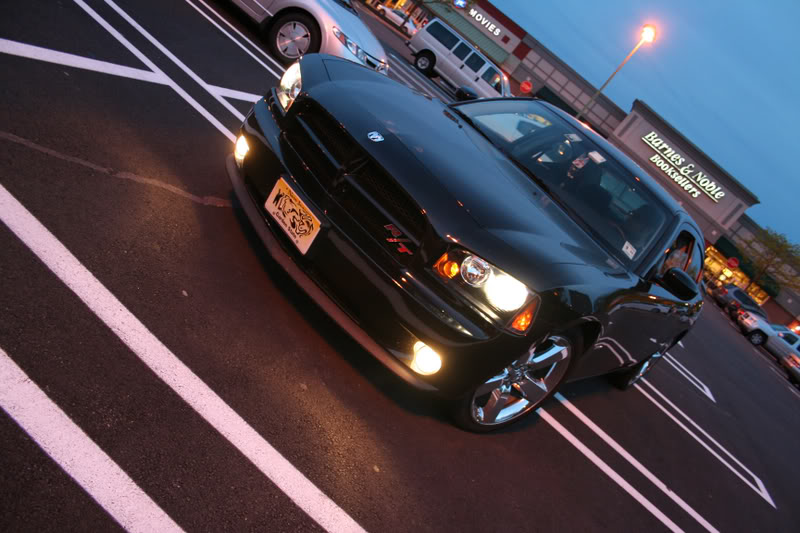 Newbie from North Jersey Picture019