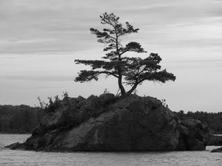 Sault Photography