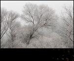 Saisons et Périodes Winter2