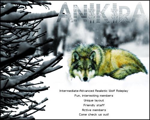 Anikira ~ Realistic Wolf RPG Winterad