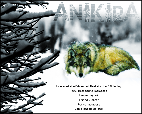 Anikira [LB] Winterad