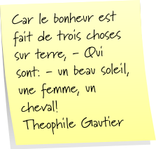 Section «Post-it» Post-it-theophile-6